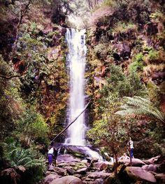 #erskinefalls #Lorne #walks #waterfalls #forest #nature #green by anna_vanstan http://ift.tt/1IIGiLS