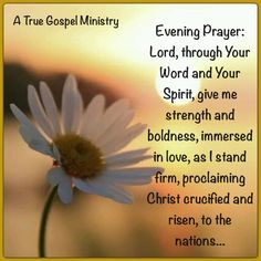 Evening Prayer: Lord, through Your Word and Your Spirit, give me strength and boldness, immersed in love, as I stand firm, proclaiming Christ crucified and risen, to the nations... #eveningprayer #atruegospelministry   #instaquote #quote #seekgod #godsword #godislove #gospel #jesus #jesussaves #teamjesus #LHBK #youthministry #preach #testify #pray #rollin4Christ