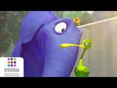 La vie en (flamant) rose : un court-métrage étonnant !