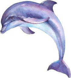Purple Dolphin Wall Decal Ocean Sea Wall Sticker Removable Fabric Vinyl Peel and Stick Kids Room Nursery Decor