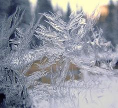 Snowflakes are conglomerations of frozen ice crystals which fall through the Earth's atmosphere. They begin as two snow crystals which deve. Snow And Ice, Fire And Ice, Snow Scenes, Winter Scenes, Snowflake Photography, Macro Photography, Creative Photography, Winter Fairy, Winter Magic