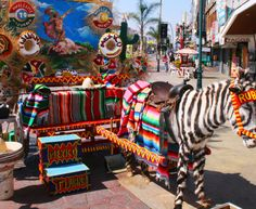 Everything You Should Know Before Going to Tijuana