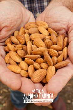 Get your handful of Almonds to stay healthy inside & out! Read about the health benefits of our farm fresh almonds here. Almonds Nutrition, Health Benefits Of Almonds, Almond Benefits, How To Stay Healthy, Healthy Life, Natural Herbs, Health Tips, Health Foods, For Your Health