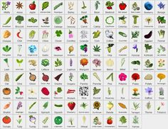 An easy to use application to design your kitchen garden. Helps you place your plants ( vegetables, fruit trees, herbs, flowers ) so that it respects the rules of crop rotation and companion planting. Based on square foot gardening. Requires Java 7.