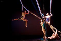 Try an aerial dance class.
