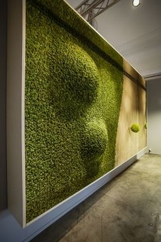 Moss walls: the new way to bring nature indoors