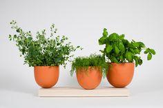 tangent grow vases by hallgeir homstvedt