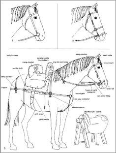6-7th century reconstruction of horse harness etc. from England. This is much earlyer then viking age!!! And - its a reconstruction, so it can be full of mistakes!!! But if we keep these too facts in mid, then the reconstruction corresponds nicely with later Vendel finds and the finds from viking age, so it might be a good possibility for how it did look in the 9-11th century, too.