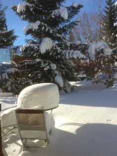 Winter chalet ursa minor
