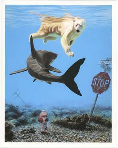 American artist Josh Keyes creates animal-based paintings that tackle environmental issues related to big changes in world's eco system