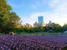 37,000 American Flags, in remembrance of fallen Massachusetts soldiers, are on Boston Common for #MemorialDayWeekend.  #BostonUSA #BostonAttitude