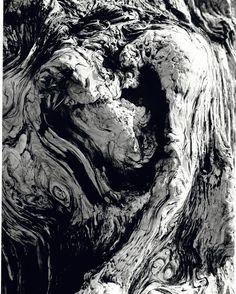 "Edmund Harry Smith, ""Moclips # 2"", 2005. Black & White Fiber Print"