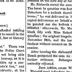 30 Dec 1862 - SHOALHAVEN. Court of Petty Sessions, Nowra TUESD...