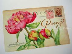 Peonies on vintage post card watercolor