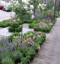 voortuin romantische tuin modern rivius tuinontwerp Small Gardens, Outdoor Gardens, Lilac Tree, Garden Edging, Small Garden Design, Garden Cottage, Front Yard Landscaping, Dream Garden, Garden Planning