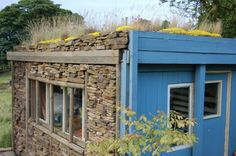 Shed rooftop garden-looks good enough to live in!