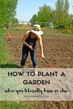 Do you want to plant a garden, but feel like you have no clue? I've been there. Learn what vegetables are best to ensure success, your hardiness zone, and how to prep your soil, all in simple language that's beginner friendly.