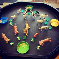 Activity - sharing the pasta equally out to the bowls of each animal! Ignore the fact that it's nutritionally incorrect, the animals won't… Eyfs Activities, Measurement Activities, Nursery Activities, Counting Activities, Animal Activities, Preschool Activities, Nutrition Activities, Nutrition Guide, Nutrition Education