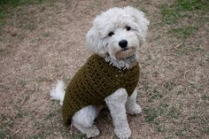 Crochet Dog Sweater Pattern...Do I dare?...                                                                                                                                                                                 More