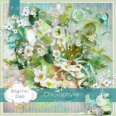Chlorophylle - Digital Crea Team collab