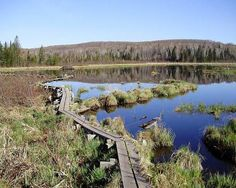 North Country Trail - http://northcountrytrail.org/