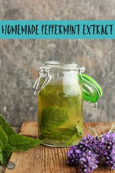 Learn how easy and affordable it is to make your own Homemade Peppermint Extract! Homemade mint extract makes wonderful Christmas and holiday gifts. Mint Extract, Recipe From Scratch, Edible Gifts, Real Food Recipes, Dessert Recipes, Desserts, Food Tips, Food Hacks, Yummy Appetizers