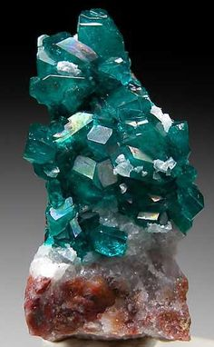 Dioptase from Tsumeb Mine, Namibia. This is my favorite mineral! Minerals And Gemstones, Rocks And Minerals, Natural Gemstones, Cool Rocks, Beautiful Rocks, Rock Collection, Mineral Stone, Rocks And Gems, Stones And Crystals