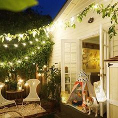 How to create a dreamy garden in a small space for Rankpflanzen wohnung