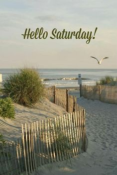 Happy Saturday Images, Saturday Quotes, Good Morning Wishes, Good Morning Quotes, Hello Saturday, Days Of Week, Happy Birthday Greetings, Good Day, Seaside