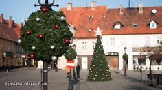 christmas decor for public space Terrachristmas.pl