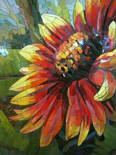 Vivid echinacea