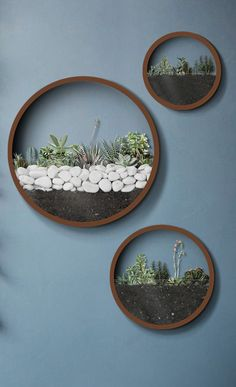 Nordic Succulent Wall Planter Vase Product Description Your imagination is the limit with one of our
