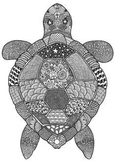 schildkröte zentangle ausmalbild | mandalas | ausmalbilder