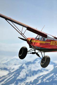 bush plane #airplanes
