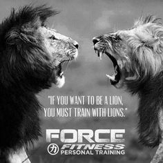 Personal Training, Fitness, Force Fitness, Lions, Motivation, Be the Best,