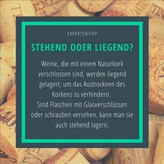 Stehend oder liegend - Wie lagert man nun Weinflaschen richtig? Wir haben unsere Experten befrag. Hier die Antwort! #wein #wine #vino #winelover #instawine #vinho #winestagram #winetime #winetasting #winery #beautiful #nature #germany #redwine #sommelier #winegeek #winelife #winelovers #wineoclock #cheers #clouds #landscape #sunset #wines #friends #sonne #Rheinebene #blackforest #eindrucksvoll