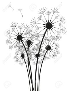 Dandelions Silhouette Isolated On White Royalty Free Cliparts ...