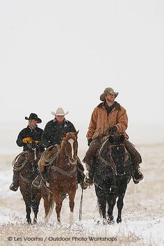"""""""Winter Cowboys"""" Nature Photography Workshops - H1P4132 - Photos from our Nature Photography Workshops"""