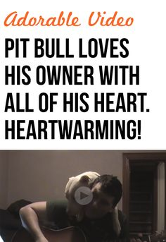 This pit bull has so much fun with his human companion! Love it!!