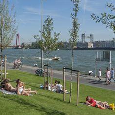 Boompjes Promenade Rotterdam ,Groene oase langs de Maas.