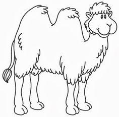 Camel                                                                                                                                                                                 More