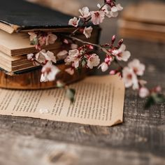 Flowery Wallpaper, Book Wallpaper, Flower Background Wallpaper, Wallpaper Iphone Cute, Cool Backgrounds For Iphone, Flower Backgrounds, Beautiful Flowers Wallpapers, Cute Wallpapers, Book Aesthetic