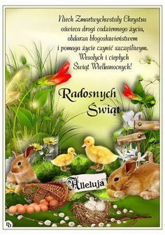 Easter, Bird, Christmas, Happy Easter, Astrology Signs, Random Stuff, Xmas, Easter Activities, Birds