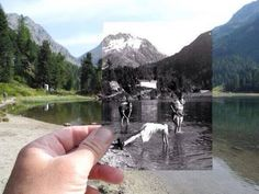 Now and Then photography black and white nature cool photos photo photography ideas