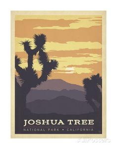 Joshua Tree National Park, California Poster von Anderson Design Group - AllPosters.at