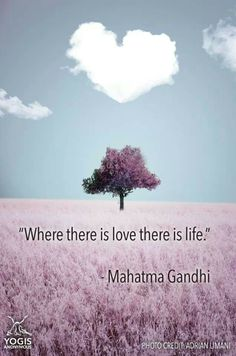 Inspiring and by Calm Down Now, an empowering mobile… Open Quotes, Inspirational Quotes, Gandi Quotes, Mahatma Gandhi Quotes, Everything Is Connected, Affirmation Quotes, World Peace, All You Need Is Love, Amazing Quotes