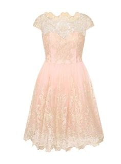 **Chi Chi London Curve Cap sleeve tea dress - View All Sale - Sale & Offers - Dorothy Perkins