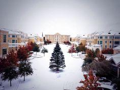 TCU on Snow Day, prettiest school ever