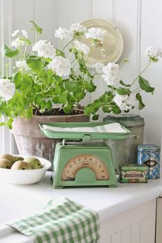 Vintage Green and White Kitchen + Gingham + Antique Scale + White Geraniums