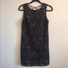 NWT Max Studio Dress Brand new, never worn, tag is detached. This dress has a looser fit and hangs at about knee length. Size extra small. Shell: 100% polyester. Lining: 97% polyester 3% spandex. Max Studio Dresses